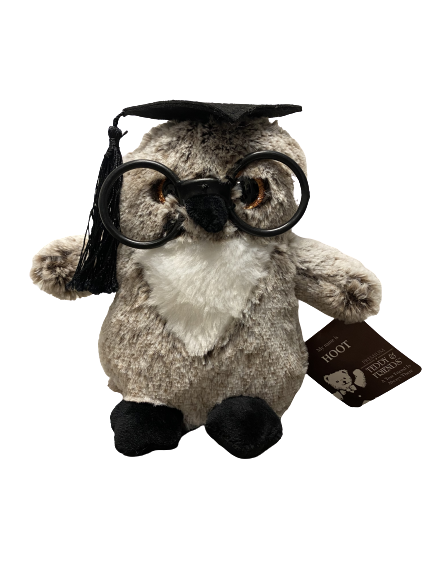 Owl graduation soft toy