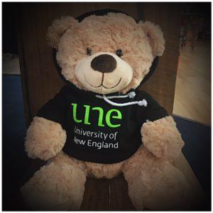 Bear UNE Hoodie