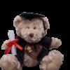 graduation soft toy