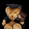 Graduation Bear – Celebration